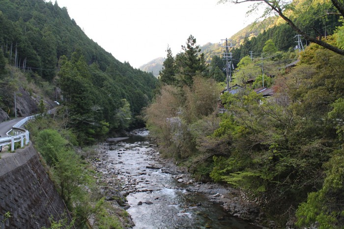 観音橋から見た景色