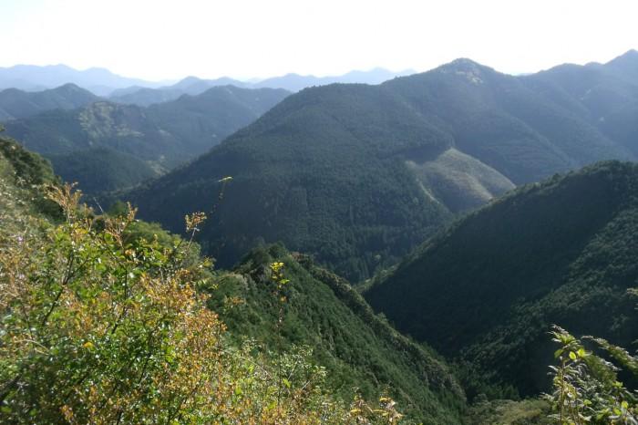 峠からの眺め
