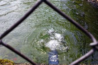 ボコボコと音をたてていた給水口